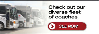 Check out our diverse fleet of coaches